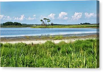 Gordons Pond - Cape Henlopen State Park - Delaware Canvas Print by Brendan Reals