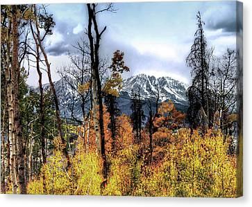 Gore Range Canvas Print by Jim Hill