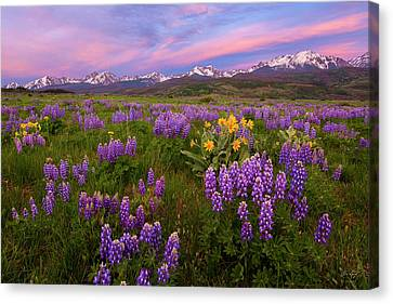 Canvas Print featuring the photograph Gore Range Sunrise by Aaron Spong