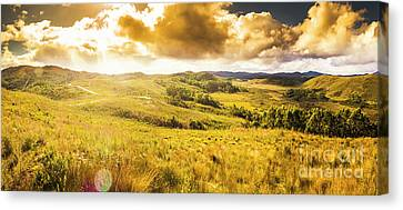 Gorgeous Golden Sunset Field  Canvas Print