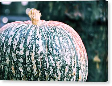 Gorgeous Gourd Canvas Print by JAMART Photography