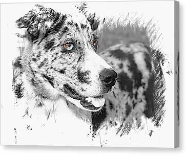 Gorgeous Canvas Print by Joyce Baldassarre