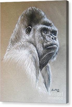 Gorilla Canvas Print by Anastasis  Anastasi