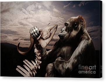 Canvas Print featuring the photograph Gorilla And Bones by Christine Sponchia
