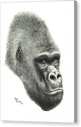 Gorilla Canvas Print by Mary Rogers