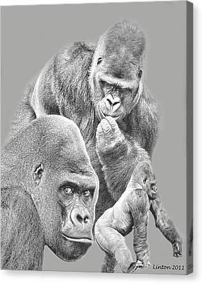 Ape Canvas Print - Gorilla Montage 2 by Larry Linton