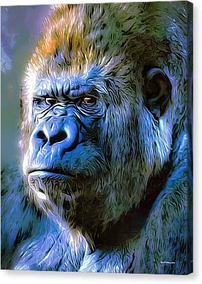 Gorilla Portrait Canvas Print by Scott Wallace