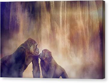 Gorillas Canvas Print by Margaret Goodwin