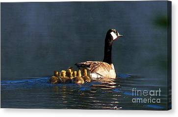 Gosling On Parade Canvas Print