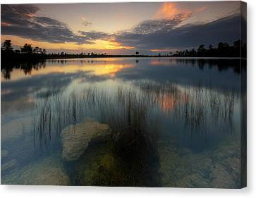 Canvas Print featuring the photograph Gossamer Glades by Mike Lang