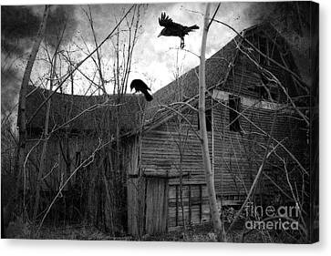 Gothic Surreal Haunting Old Barn With Crows Ravens - Spooky Gothic Black White Ravens Flying Canvas Print by Kathy Fornal