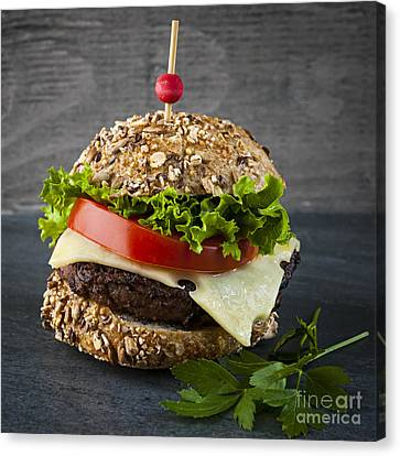 Gourmet Hamburger Canvas Print by Elena Elisseeva