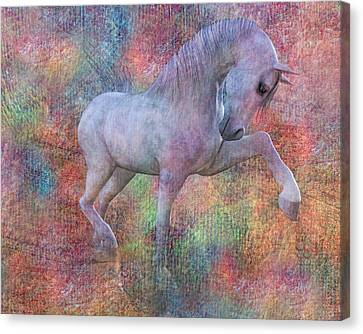 Grace Canvas Print by Betsy Knapp