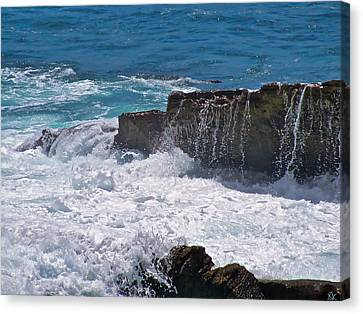 Grace Of The Waves Canvas Print