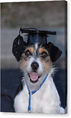 Graduation Canvas Print