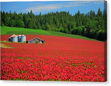 Grain Bins Barn Red Clover Canvas Print by Jerry Sodorff