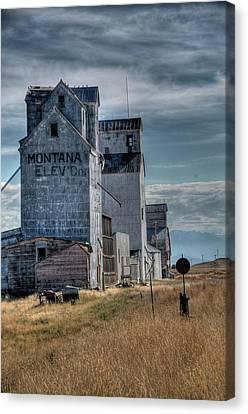 Grain Elevators, Wilsall Canvas Print