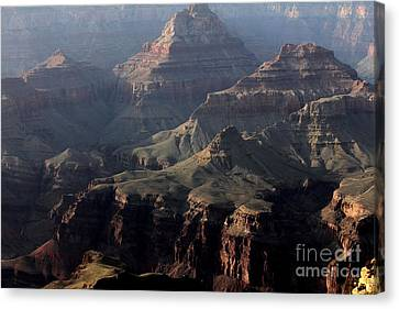 Grand Canyon 1 Canvas Print by Erica Hanel