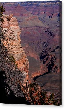 Canvas Print featuring the photograph Grand Canyon 11 by Donna Corless