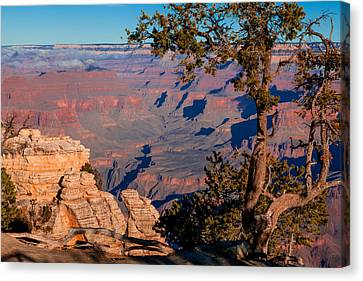 Canvas Print featuring the photograph Grand Canyon 20 by Donna Corless