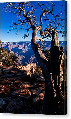 Canvas Print featuring the photograph Grand Canyon 27 by Donna Corless