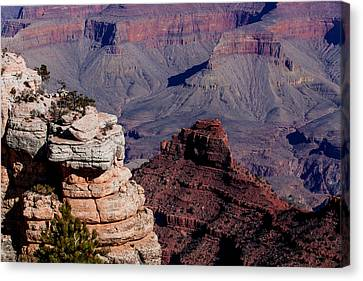Canvas Print featuring the photograph Grand Canyon 3 by Donna Corless