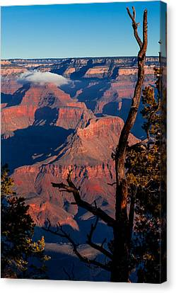 Canvas Print featuring the photograph Grand Canyon 30 by Donna Corless