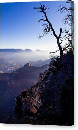 Canvas Print featuring the photograph Grand Canyon 33 by Donna Corless