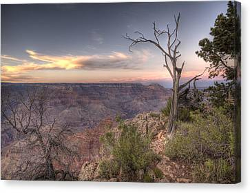 Grand Canyon 991 Canvas Print by Michael Fryd