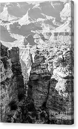 Grand Canyon Bw Impression Canvas Print