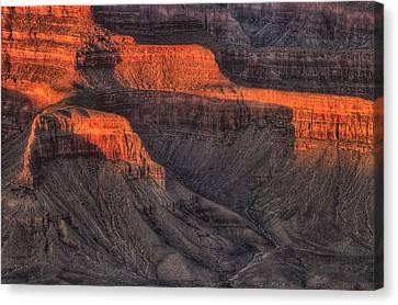 Grand Canyon Light Canvas Print by Steve Gadomski