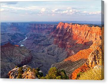 Shadow Canvas Print - Grand Canyon National Park, Arizona by Javier Hueso
