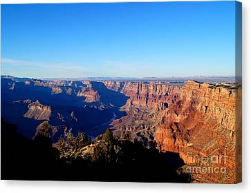 Grand Canyon Navajo Point Canvas Print by Timea Mazug