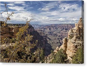 Grand Canyon No. 7  Canvas Print by Belinda Greb