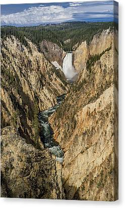Grand Canyon Of The Yellowstone And Yellowstone Falls Canvas Print