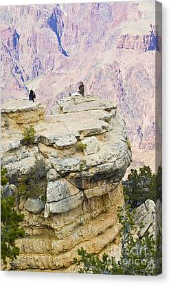 Canvas Print featuring the photograph Grand Canyon Photo Op by Chris Dutton