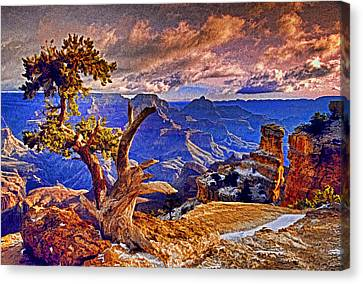 Grand Canyon Pine Canvas Print by Dennis Cox WorldViews