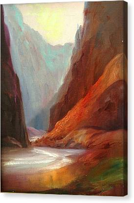 Grand Canyon Rafting Canvas Print by Sally Seago