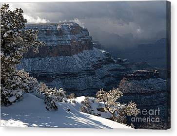 Grand Canyon Storm Canvas Print by Sandra Bronstein
