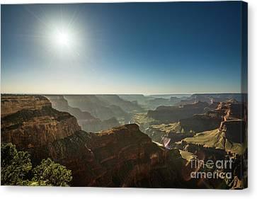 Grand Canyon Sun Canvas Print by Jamie Pham