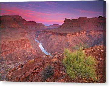 Grand Canyon National Park Canvas Print - Grand Canyon Sunrise by David Kiene