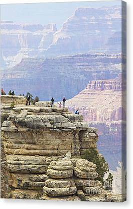 Canvas Print featuring the photograph Grand Canyon Vista by Chris Dutton