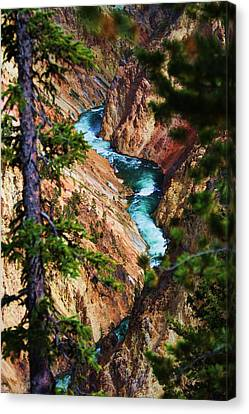 Grand Canyon  Yellowstone Canvas Print by Russell  Barton
