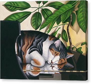 Grand Dreams - Cat On Piano Canvas Print by Carol Wilson