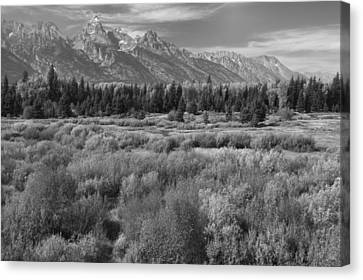 Grand Teton Afternoon Canvas Print
