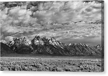 Grand Teton Majesty Canvas Print by Sandra Bronstein