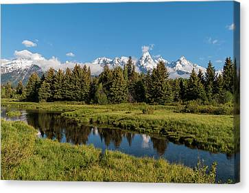 Grand Teton Reflection Canvas Print by Brian Harig