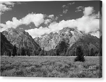 Grand Tetons In Black And White Canvas Print