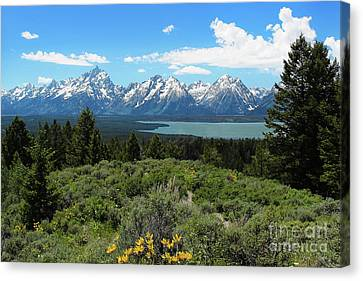 Canvas Print featuring the photograph Grand Tetons by Jemmy Archer
