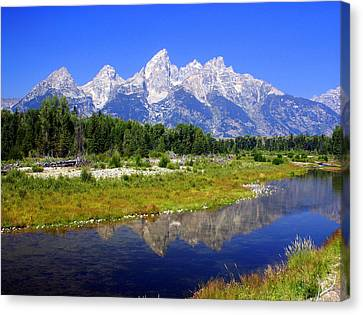 Grand Tetons Canvas Print by Marty Koch